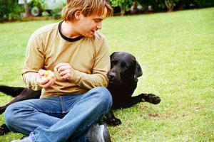 Rassespezifische Bedürfnisse der Hunde berücksichtigen
