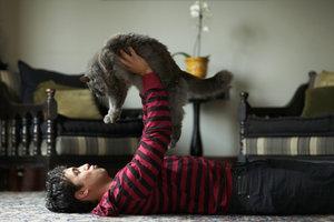 Katzen helfen dem Menschen beim Entspannen.