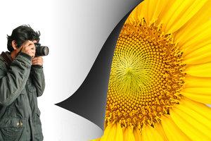 Mit einer DSLR-Kamera können wunderschöne Nahaufnahmen gelingen.