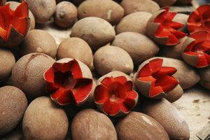Die Große Sapote ist eine süß schmeckende, säurearme Frucht.