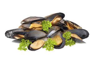 Muscheln sind lecker, jedoch mit gesundheitlichen Risiken verbunden.