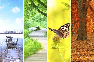Bilder und Geschichten veranschaulichen die Jahreszeiten.