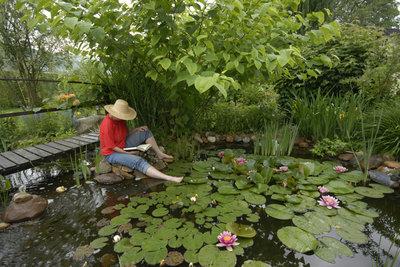 Ein Teich bringt Frische in Ihren Garten.