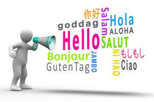 Nach Jakobson erfüllt jede beliebige Sprache 6 Sprachfunktionen.