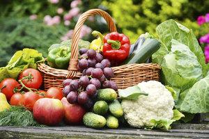 Frisches Obst und Gemüse als Grundstein für gesunde Ernährung und körperliche Fitness.