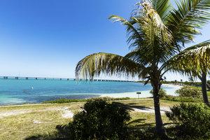 Palmen und türkisblaues Wasser so weit das Auge reicht auf den Florida Keys.