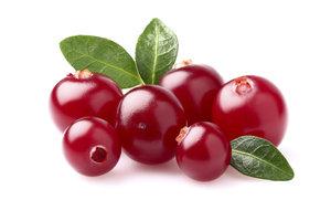 Frische Cranberrys sind gesund und lecker.