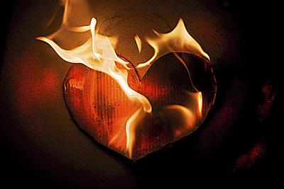In Sybilla Schwarz' Gedicht geht es um die sprichwörtliche Konsistenz des Herzens.
