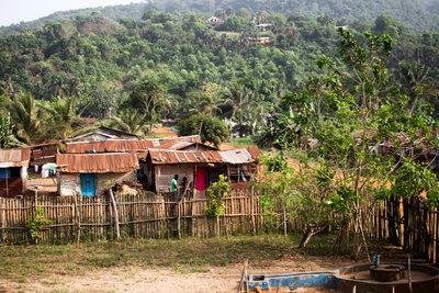 Das Ebola-Fieber ist in Westafrika beheimatet und sorgt für Epidemien mit vielen Toten.