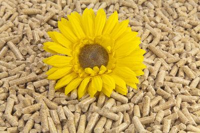 Pelletheizungen sind preiswert und umweltfreundlich.