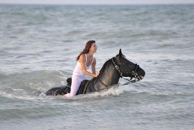 Um mit seinem Pferd schwimmen zu gehen, braucht es von beiden Seiten viel Vertrauen.