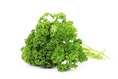 Petersilie enthält viele gesunde Inhaltsstoffe.