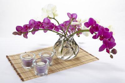 Orchideen lassen sich mit Wasserkugeln perfekt dekorieren.