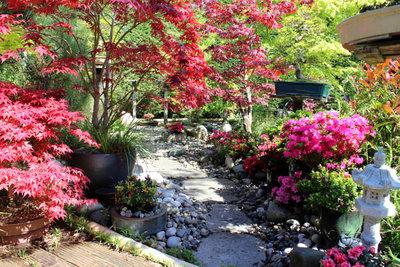Einen eigenen Steingarten anlegen - in wenigen Schritten kann es klappen!