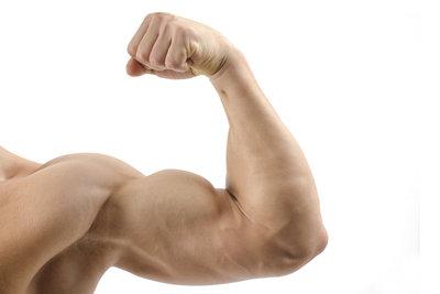 Die Muskulatur des Menschen besteht nicht nur aus sichtbaren Muskeln.