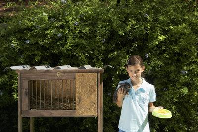 Ein trockener und sauberer Stall ermöglicht ein zufriedenes und gesundes Tier.