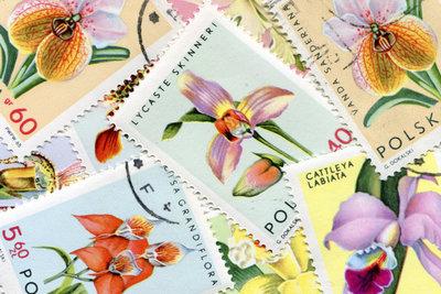 Bringen Sie Ordnung in das Chaos Ihrer Briefmarkensammlung.
