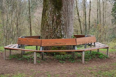 Bauen Sie sich einen schattigen Platz unter einem Baum.