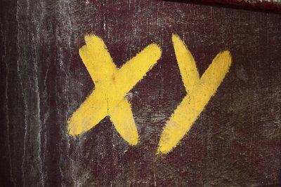 X und Y sind die Abkürzungen für zwei Generationen mit unterschiedlichen Zielen und Idealen.