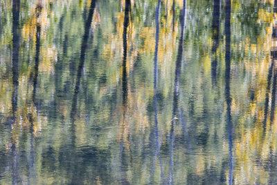 Claude Monet ist einer der größten impressionistischen Maler.