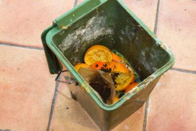 Einmaliges Ausleeren des Biomülls reicht meist nicht aus, um Maden und Ungeziefer zu beseitigen.