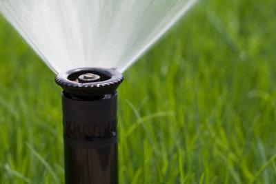 Ein Wassersprenger sorgt im Sommer dafür, dass Ihr Rasen grün und schön bleibt.