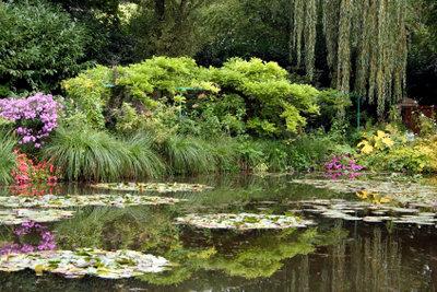 Je naturnaher ein Teich angelegt wurde, umso weniger Algenprobleme gibt es.