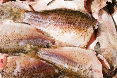 Fisch ist sehr gesund und lecker.