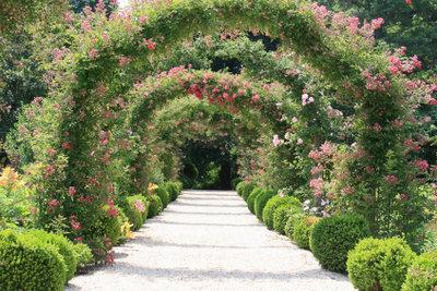 unkrautfreie Gehwege im Garten sehen einfach besser aus.