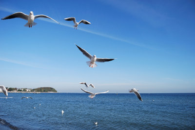 Eine Tagesausflug an die Nordsee ist eine schöne Alternative zum teuren Urlaub.