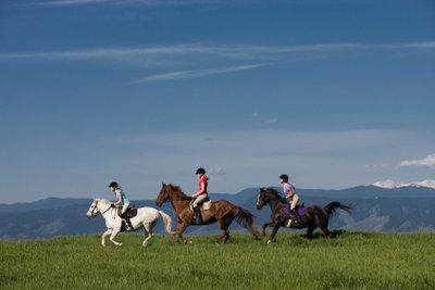 Wer mit durchgehenden Pferden umzugehen weiß, kann jeden Ausritt entspannt angehen