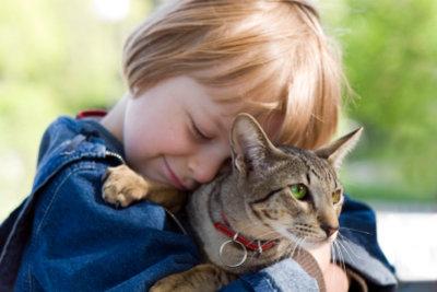 Das Alter Ihrer Katze in Menschenjahren ist nicht leicht zu bestimmen.