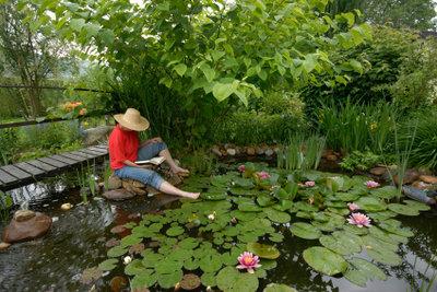 Enten aus dem Gartenteich vertreiben