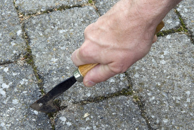Mit einem Fugenkratzer können Sie lästiges Unkraut entfernen.