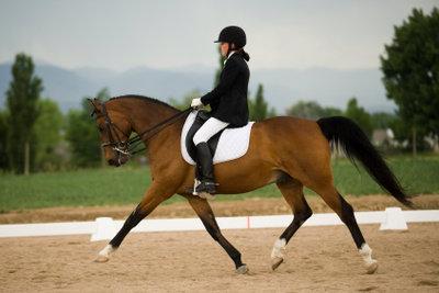 Schenkelweichen sind eine gute Gehorsamsübung für Ihr Pferd