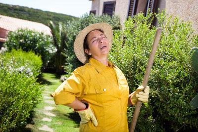 Bei Schmerzen im Lendenwirbelbereich sollten Sie auf Gartenarbeit verzichten.