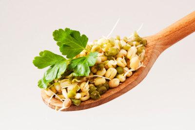 Mungobohnensprossen sind gesund und einfach zuzubereiten.
