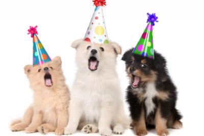 So haben Sie mit Geburtstagsgags die Lacher auf Ihre Seite.