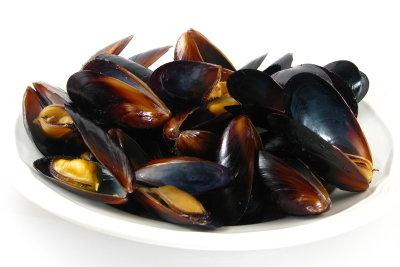 Muscheln sollten vor der Zubereitung gründlich gewaschen werden.