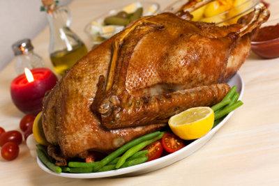 Die Weihnachtsgans war lecker - Eingebranntes Fett aus dem Backofen entfernen macht weniger Spaß!