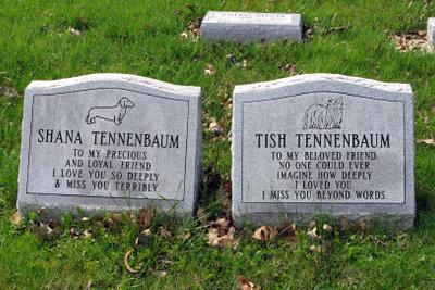 Schlicht aber eindrucksvoll: Das Grab zweier Hunde.