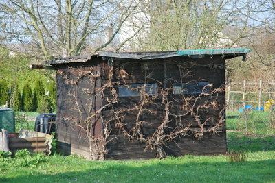 Nicht für jedes Gartenhaus benötigen Sie eine Baugenehmigung.