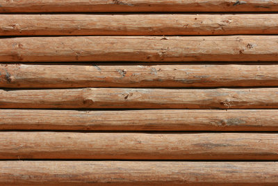 Baumstämme kaufen erfordert einige Kenntnisse über Holzarten!