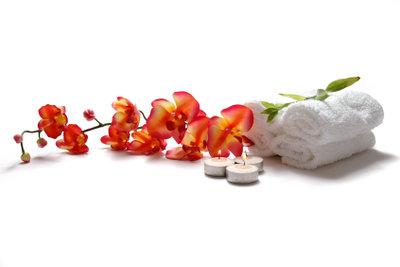 Zygopetalum - richtige Pflege für maximale Blüte.