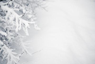 Der Winter fordert die Autofahrer besonders heraus.