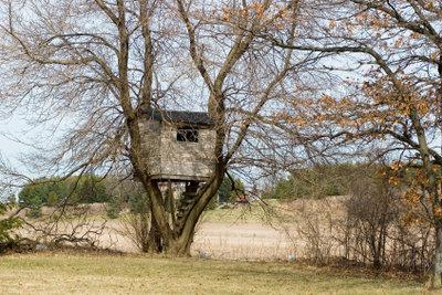 Ein Abenteuerspielplatz sondergleichen: Das selbst gebaute Baumhaus.