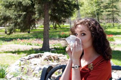 Leichte Sinusitis kann durch Hausmittel geheilt werden.
