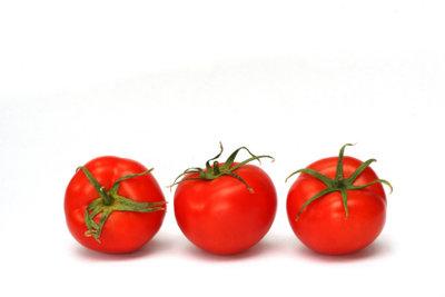 Es ist einfach, Tomaten einzukochen.