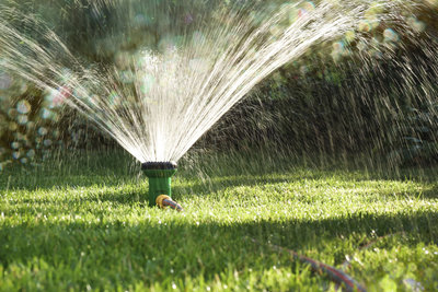 Rasen braucht sehr viel Wasser um zu gedeihen.