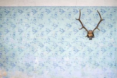 Ein einziges Objekt als Wanddekoration erinnert an einen Ausstellungsraum.